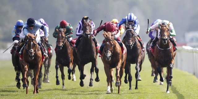 Horse Racing Preview