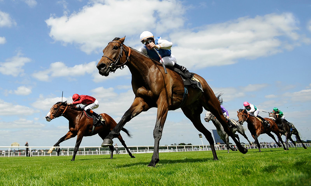 Horse-Racing-Preview-Ascot-13th-may-2017large