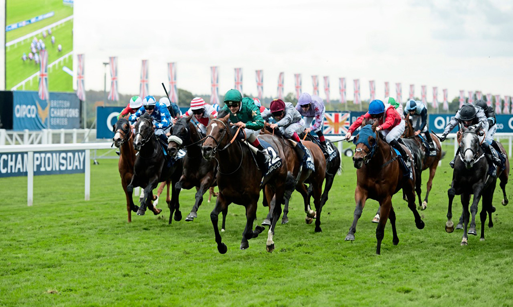 Horse-Racing-Preview-Ayr-8th-May-2017-large