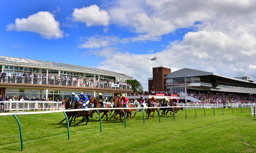 Horse Racing Preview -York & Sandown - 17th June 2017