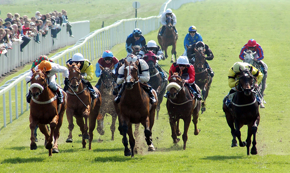 Horse Racing Preview - Market Rasen & Ripon- 21st May 2017