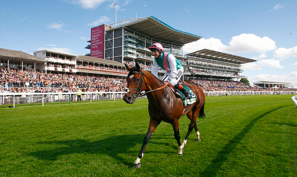 Horse Racing Preview - York, Haydock, Chester & The Curragh - 27th May 2017