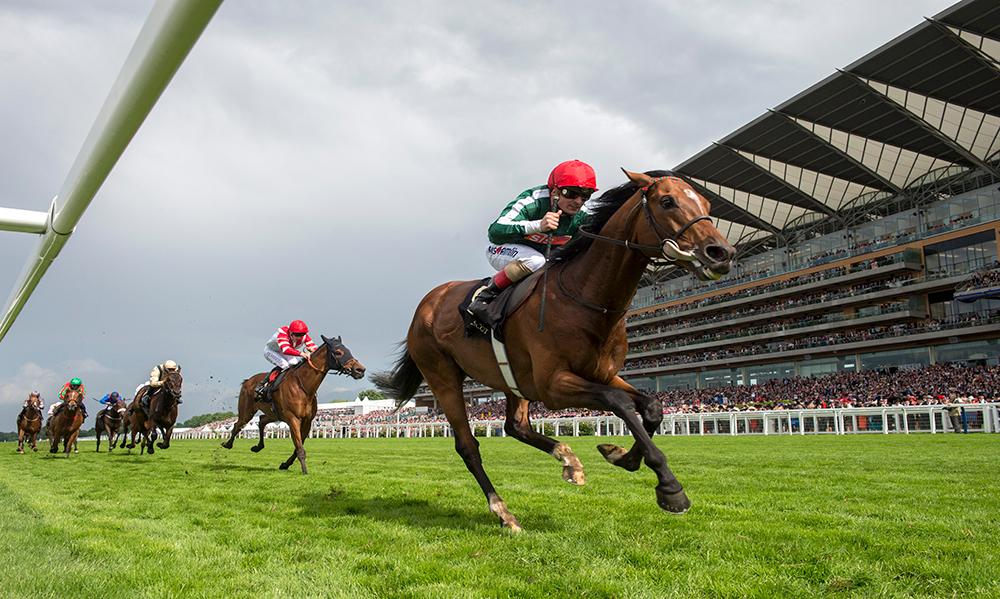 UK / Ireland Horse Racing Preview - 15th May 2017