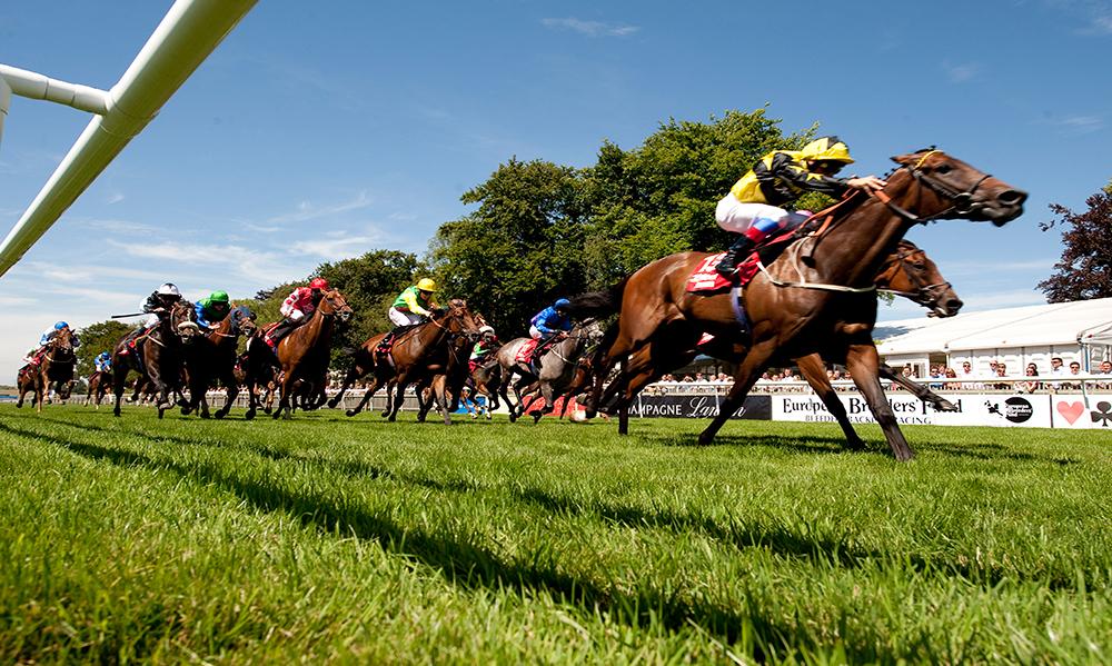 UK / Ireland Horse Racing Preview - 19th May 2017