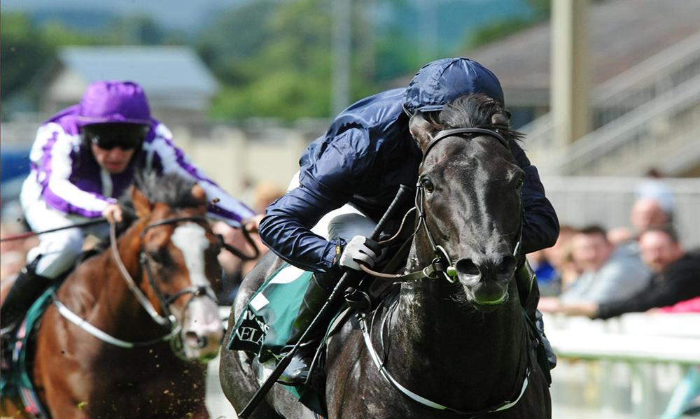 UK / Ireland Horse Racing Preview - 23rd June 2017