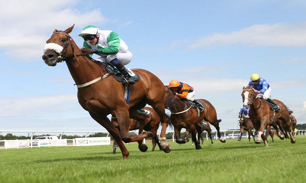 UK / Ireland Horse Racing Preview - 29th May 2017