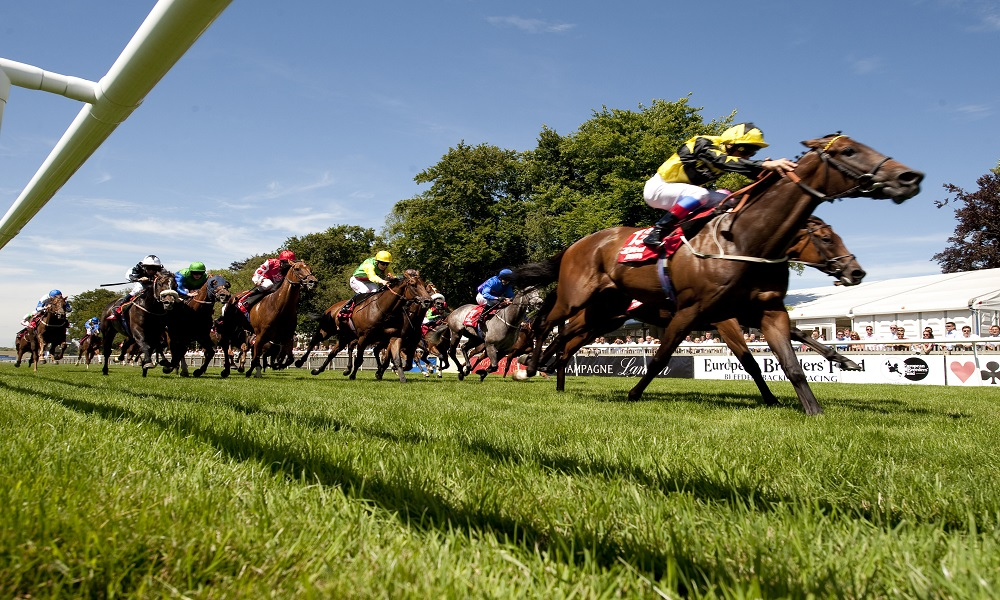 UK / Ireland Horse Racing Preview - 31st May 2017